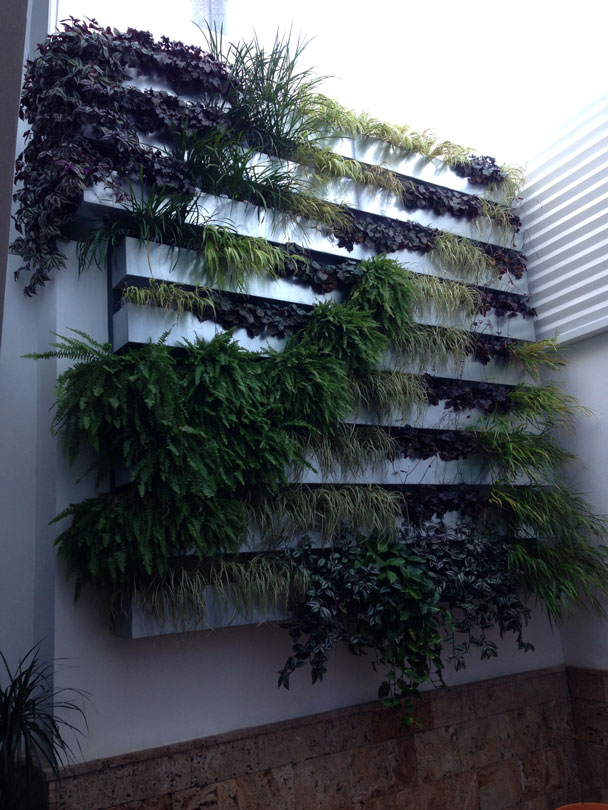 Reforma oficina arsamar jardin vertical